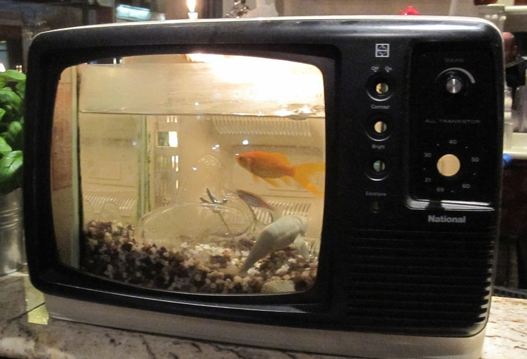 Fish tank TV disposal in Manchester and Chorlton